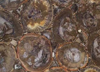 Dark Color Petrified Wood Slab , Natural Stone Slabs For Round Tabletop