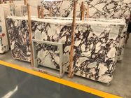 China Luxury Breccia Violetta Marble Natural Stone And Tile Hotel Wall Decoration Panel company
